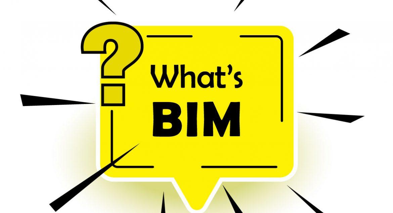 What's BIM-01
